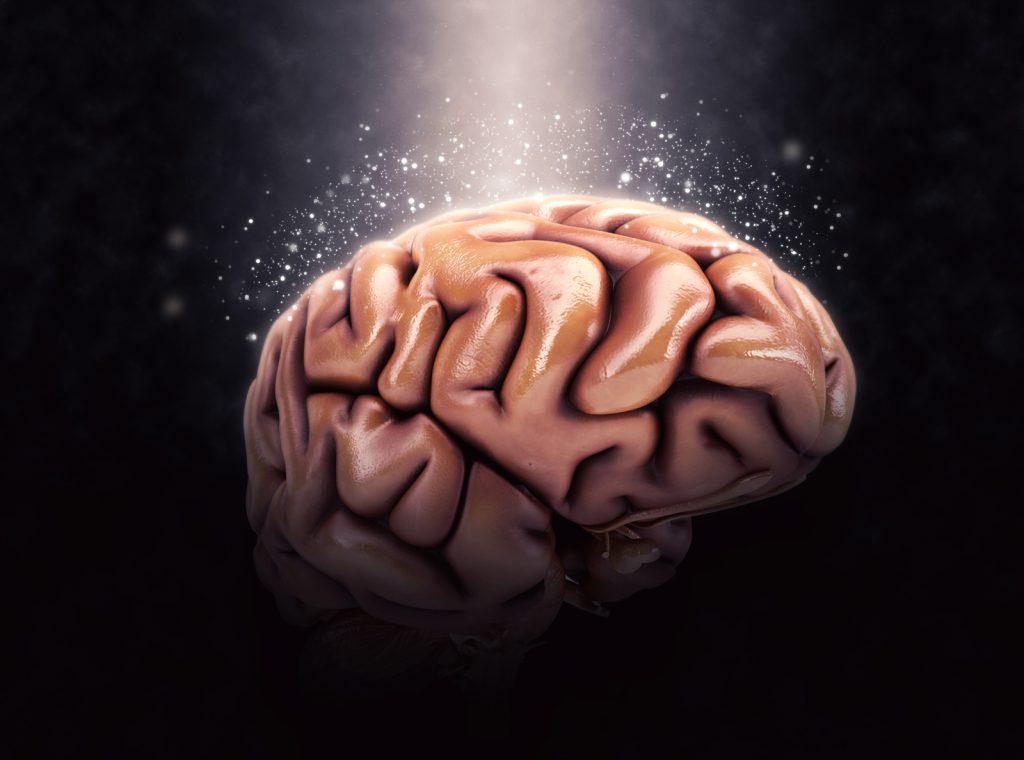 Obrázek: Co když se umělá inteligence naučí hlouposti? Vědci z MIT našli chyby v datech pro učení AI