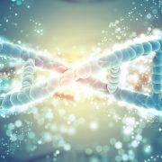 Obrázek: Umělý život je na dosah! Vědci nutí kvasinky vyrábět léky i paliva