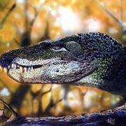 Obrázek: Objevené stopy tajemného plaza odkrývají předka krokodýlů a dinosaurů