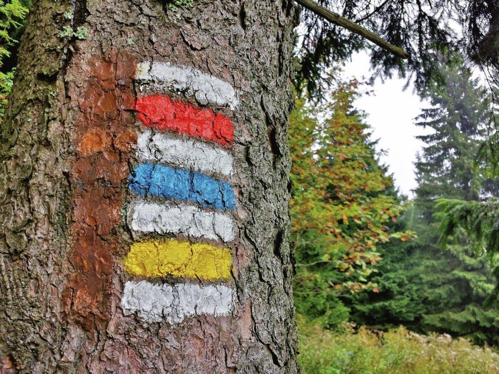 Obrázek: Český systém turistických značek patří k nejlepším. O naše značky je ve světě zvýšený zájem