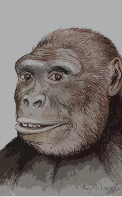 Obrázek: Přelomový objev: První lidé se zrodili v Evropě, nikoliv v Africe