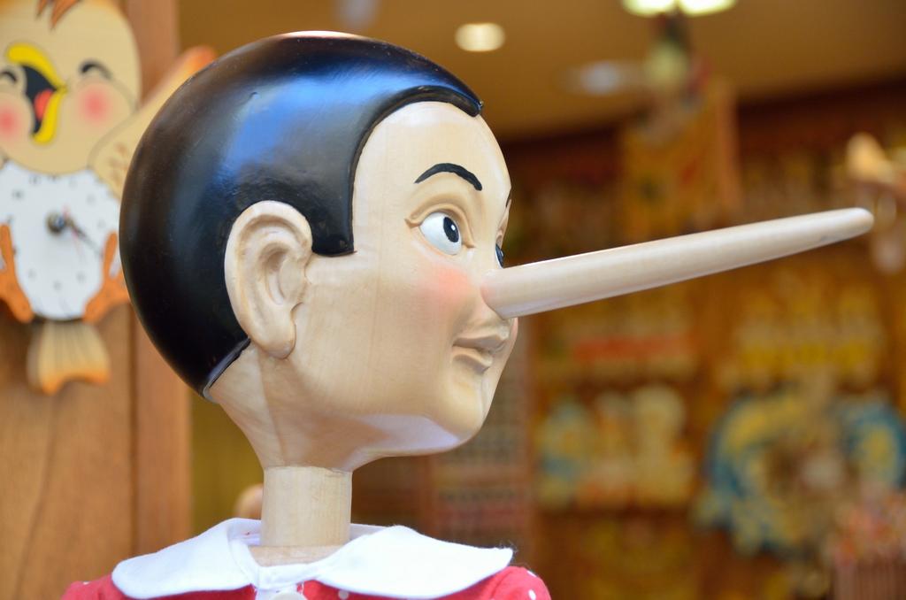 Obrázek: Polopravda horší lži: Jak rozpoznat lež a manipulaci s informacemi na internetu?