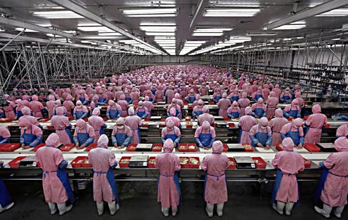 Obrázek: Sestavili Xbox, iPhone, Playstation i Kindle: Kdo je onen tichý pracant s milionem zaměstnanců?