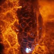 Obrázek: Vědci poprvé nahlédli do živých buněk! Fascinující video ukazuje boj imunitního systému s rakovinou