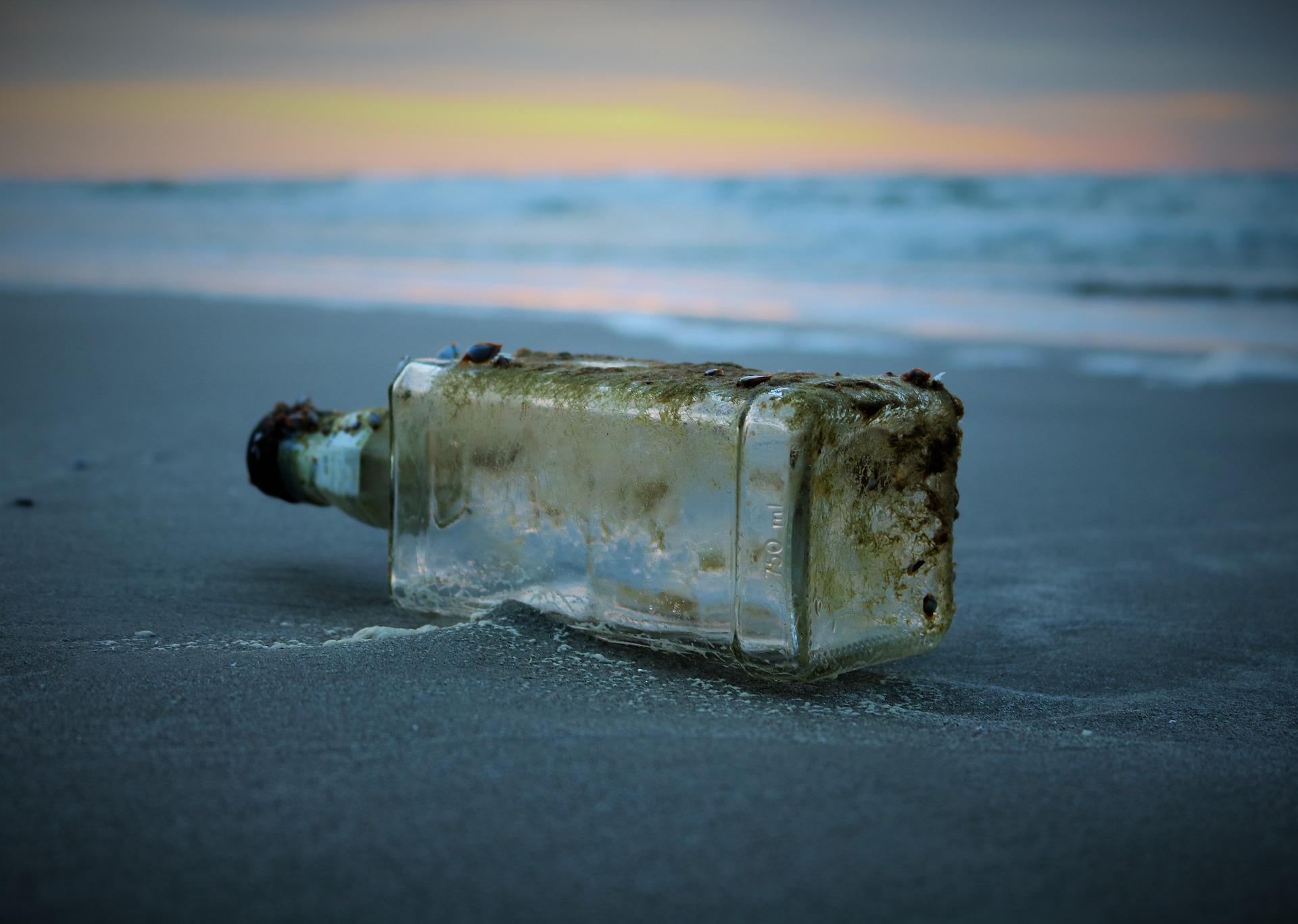 Obrázek: Korýši rozkládají mikroplasty, světovým oceánům však nepomohou