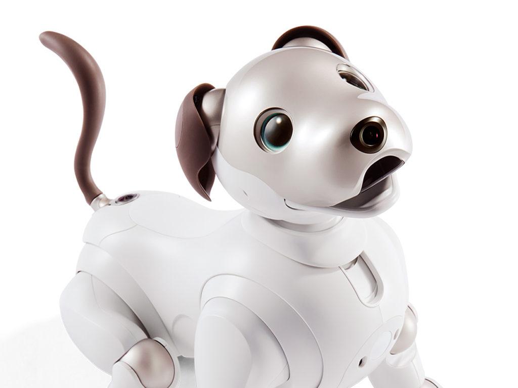 Obrázek: Sony stvořilo robotické štěňátko. Jmenuje se Aibo a je neskutečně roztomilé