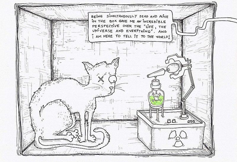 Myšlenkový experiment nazývaný Schrödingerova kočka. Zdroj: Wikimedia Commons