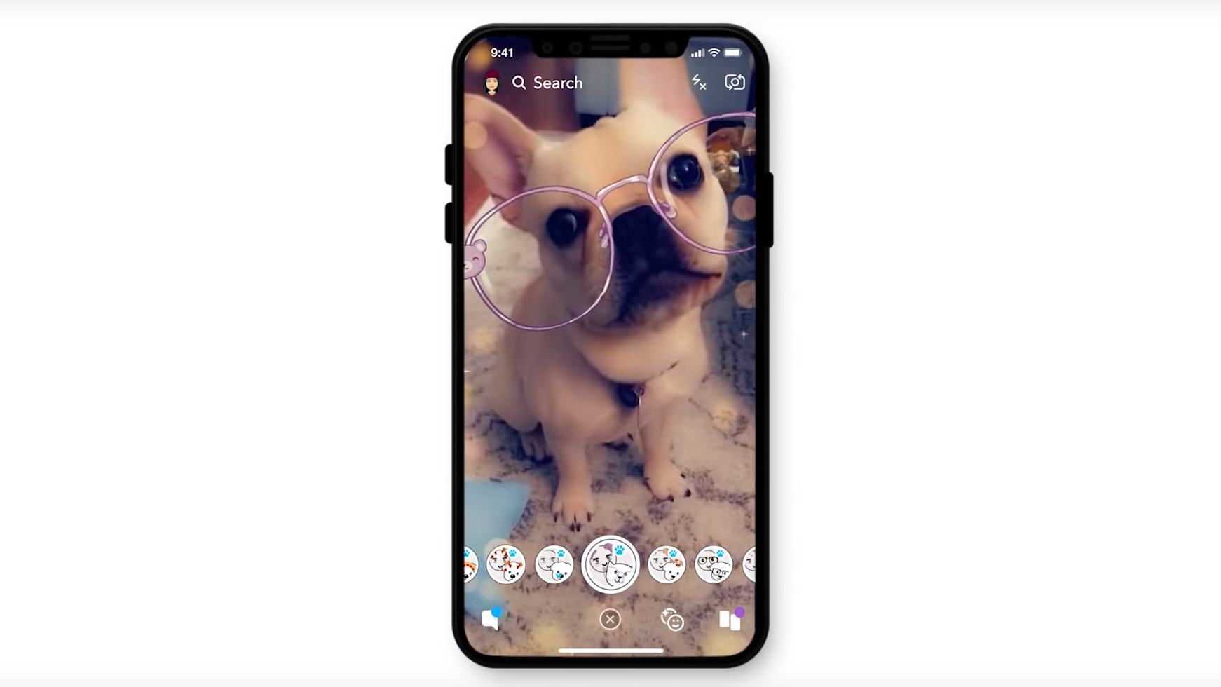 Obrázek: Snapchat mohou mít už i psi, kočky ale mají smůlu