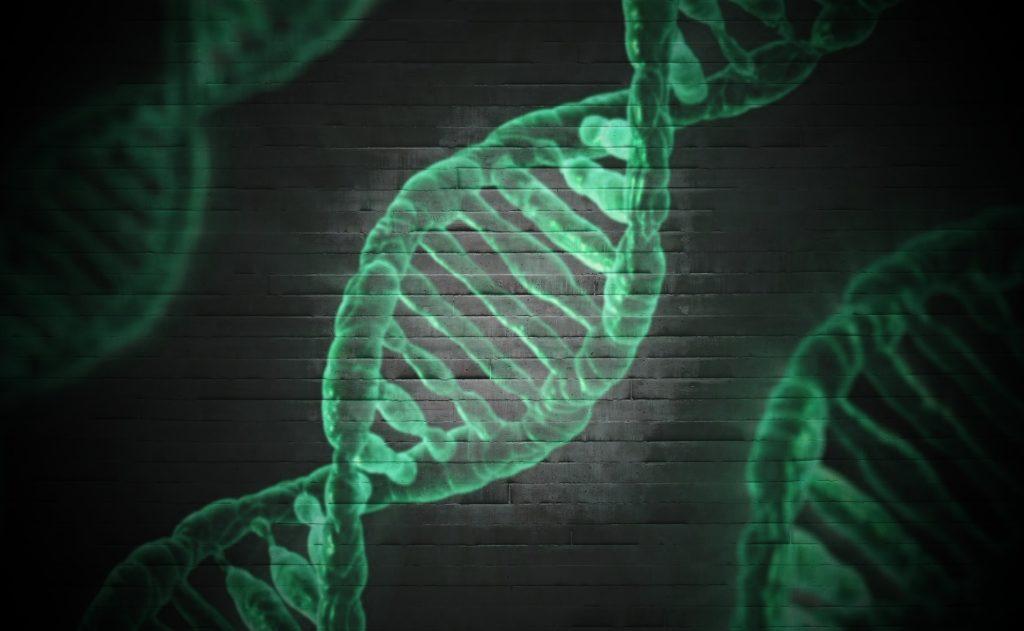 Obrázek: Genetické modifikace a stvoření umělého života: blízká budoucnost pohledem otce internetu
