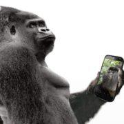 Obrázek: Displej smartphonu, který jde opravdu přehnout? Corning se snaží porušit zákony fyziky