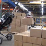 Obrázek: Robotizace ohrozí i skladníky: Robot Handle pracuje ve skladu, nerozbíjí balíky a unese až 15 kg
