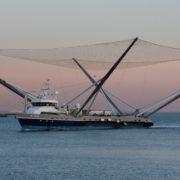 Obrázek: SpaceX ruší lodě Ms. Chief a Ms. Tree: Části raket nechá padat přímo do moře