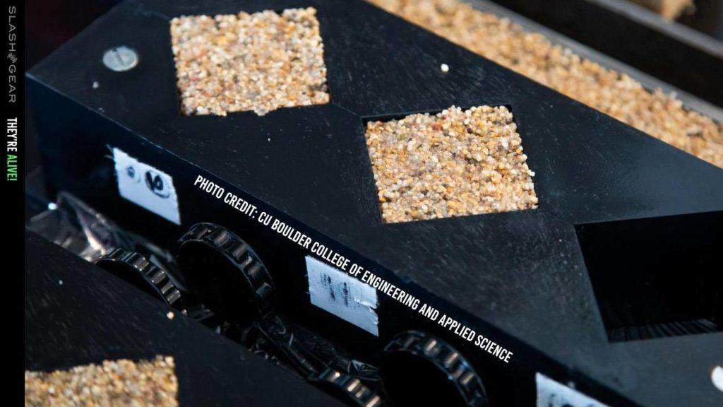 Obrázek: Živé cihly se umí samy množit: Materiál s bakteriemi sám roste a dokáže pohlcovat oxid uhličitý