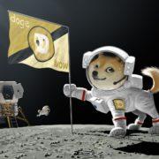 Obrázek: Dogecoin opravdu poletí na Měsíc: Muskova SpaceX dostala zaplaceno v kryptoměně